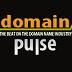 DomainPulse.com